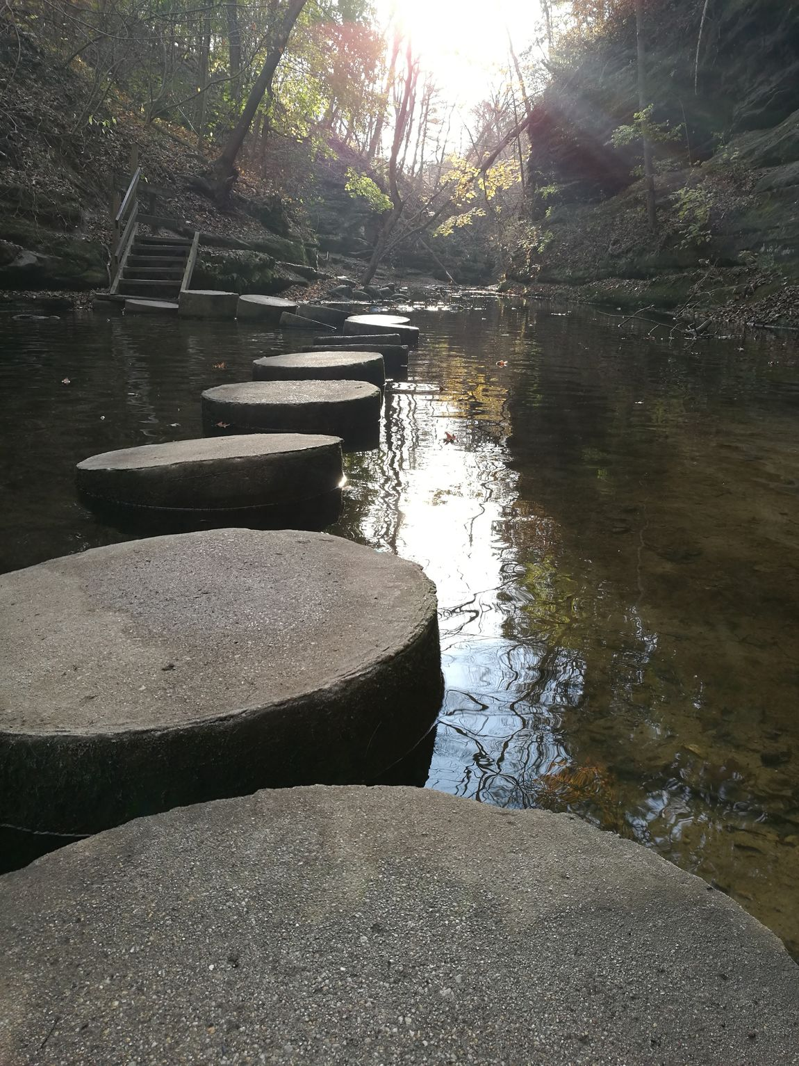 Stepingstones Water Peaceful No People Sunlight Nature Day Reflection Beauty In Nature Tranquil Scene Close-up Sky Tranquility Outdoors Tree Scenics