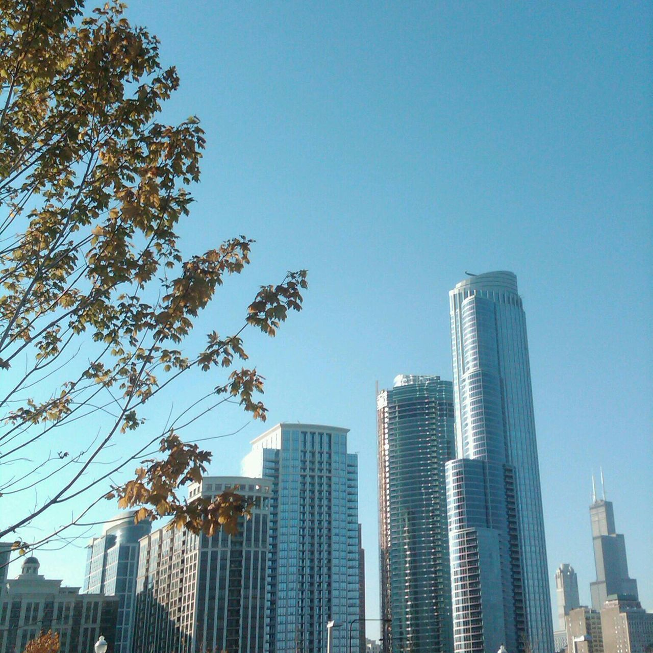 Beautiful stock photos of chicago skyline, Architecture, Built Structure, Cityscape, Clear Sky