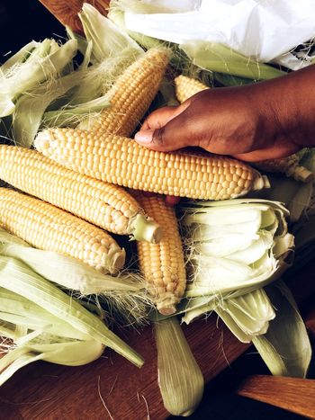 Food And Drink Food Healthy Eating Corn On The Cob Human Body Part Corn Commercial Photography