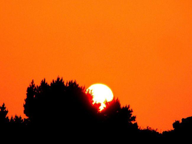 Sunset Sun_collection Beautiful Nature Landscape_Collection Enjoying The Sun Soaking Up The Sun