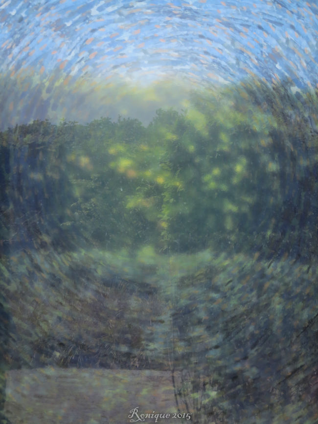 Van Gogh Abstract Abstract Photography Colerfull Circle Blue Green Blur Blurry Blurred Appeltern Tuinen Van Appeltern Peaceful And Quiet Rest & Relax What's This? Netherlands