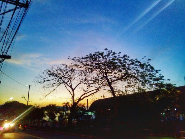Alcatel Flash Plus Silouette & Sky Eyeem Philippines PhonePhotography Phonetography Mobilephotography