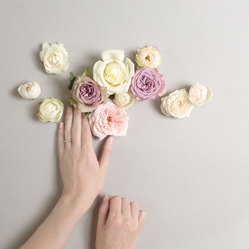 A little Friday Faffing. Have a lovely weekend everyone. Taking Photos Flowerporn Roses Davidaustin Roses Pastels Innerwest Pretty Minimal