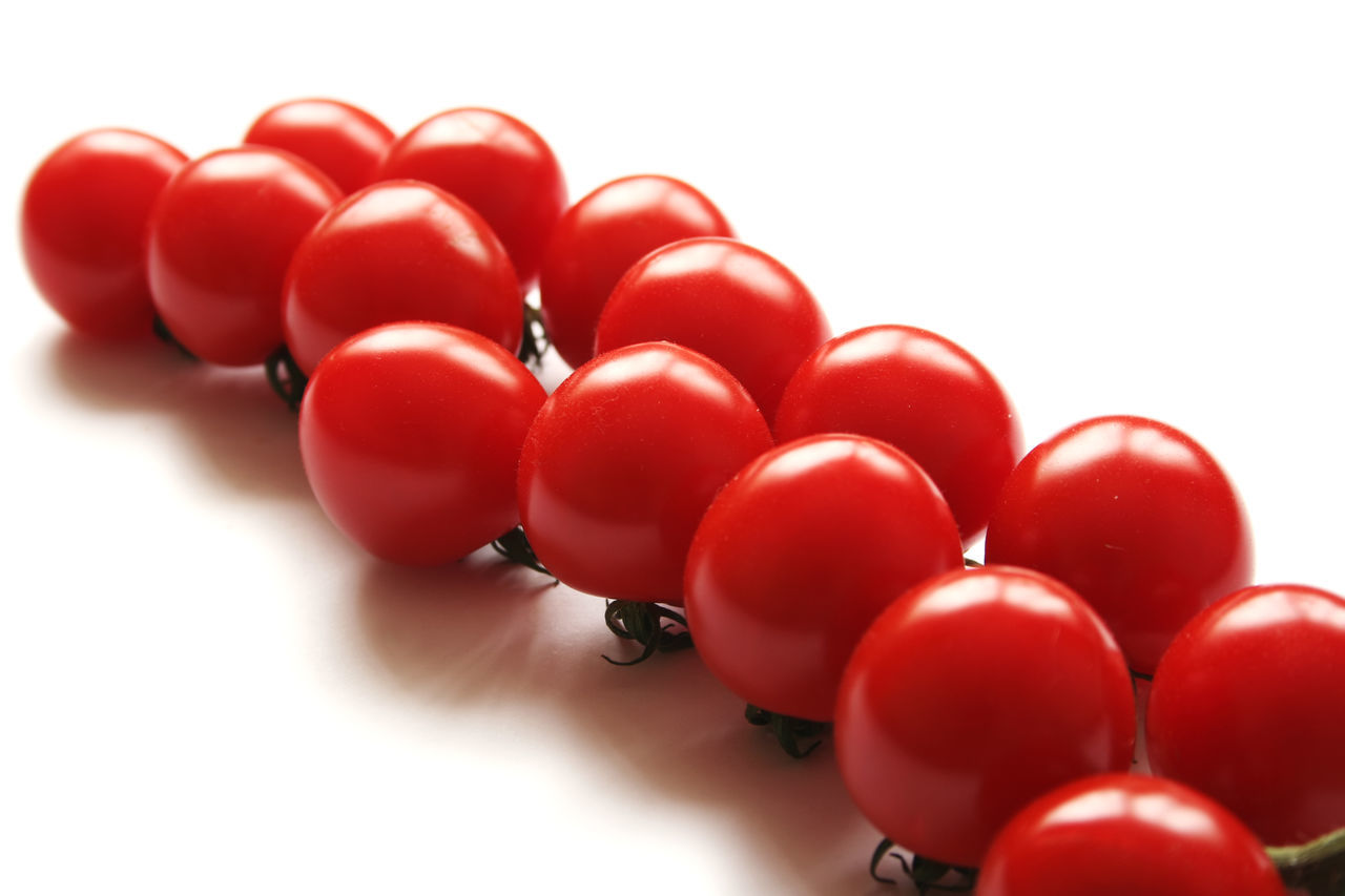 study of tomatoes on white background Cherry Tomatoes Close-up Day Food Freshness No People Red Tomato Vine Tomatoes