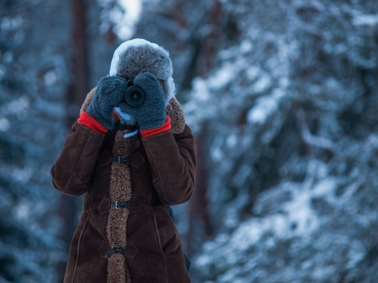 Beautiful stock photos of baer,  40-44 Years,  Brown,  Camera - Photographic Equipment,  Cold Temperature