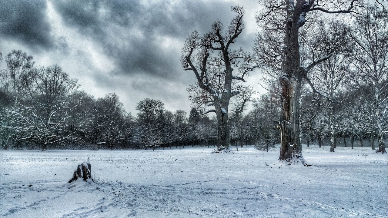 Wintertime Winterwonderland Hatefuleight Movieinspired Gettyimages Buyit Vintage Snow ❄ EyeEm Nature Lover Enjoying Life Woods Check This Out Taking Photos EyeEmBestPics Eyemphotography Colourful BUYNOW Bärensee Folgt Mir Und Ich Folge Zurück See Sky And Clouds