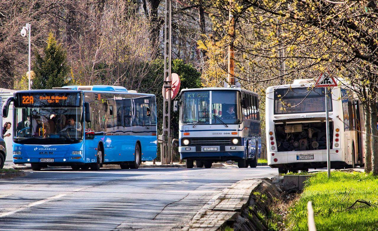 Hungary Budapest Mode Of Transport Transportation Street Streetphoto Streetphotography Bus Buses Busporn MAN Lion's City Ikarus Ikarus260 KingLong Traffic