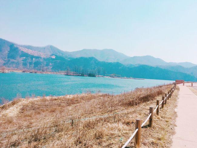 South Korea Jarasum IPhoneography