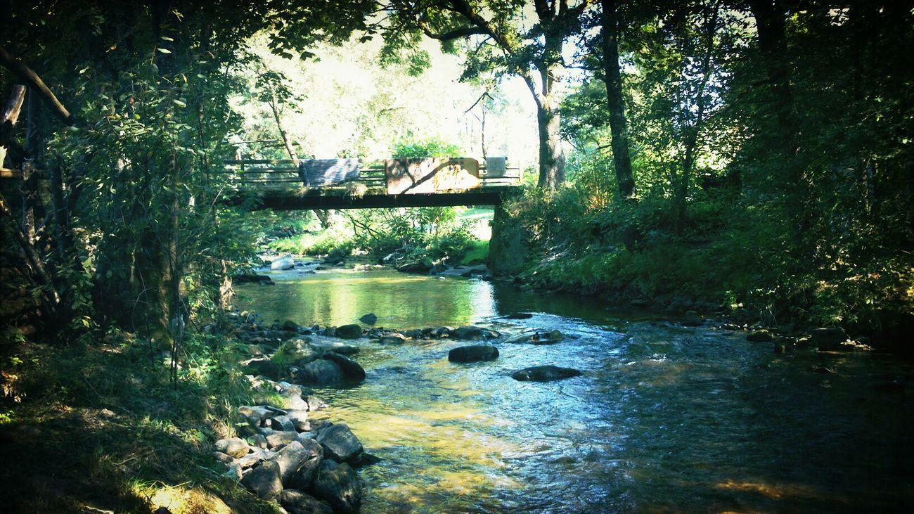 vor einer woche :) Camping River Mühlviertl Austria