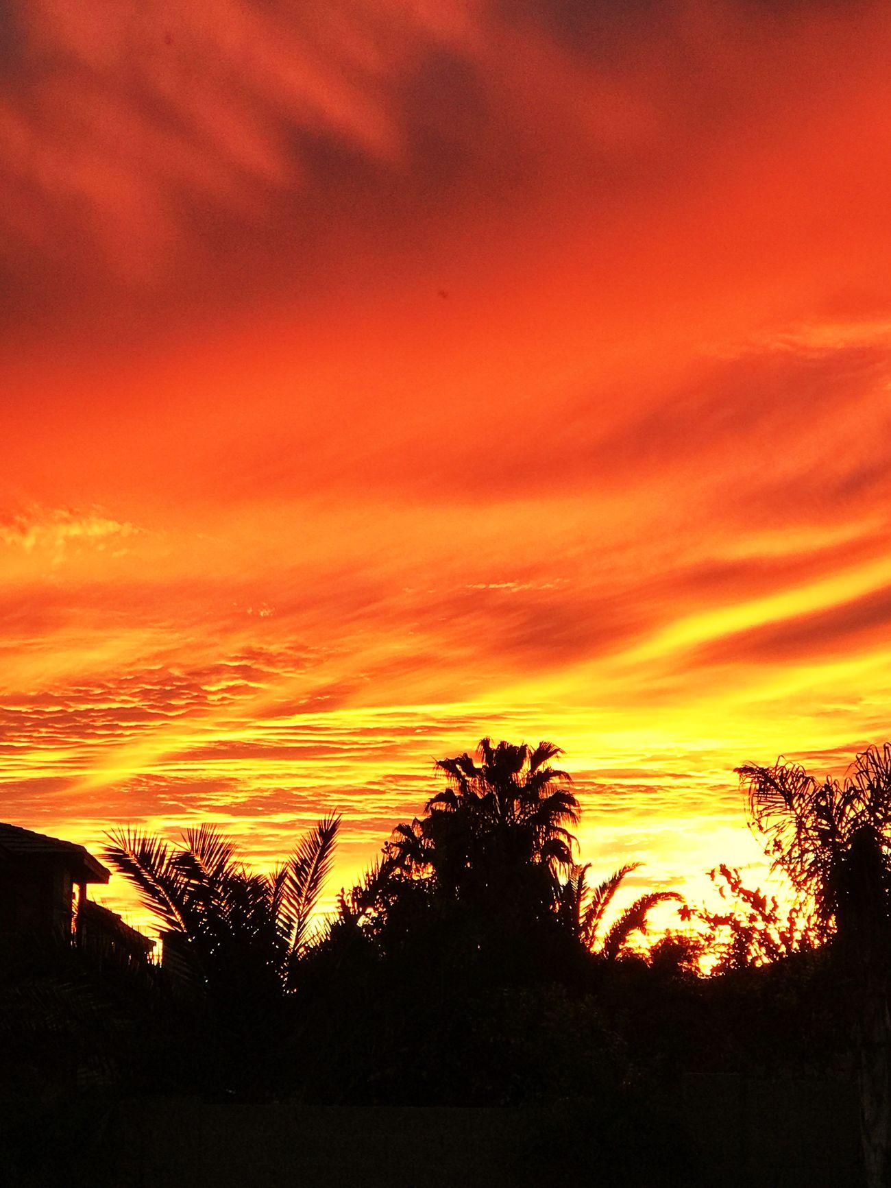 Sunset EyeEmNewHere Orange Sky Clouds Sky Sunstet Arizona Desert Landscape Sunlight Sunshine ☀