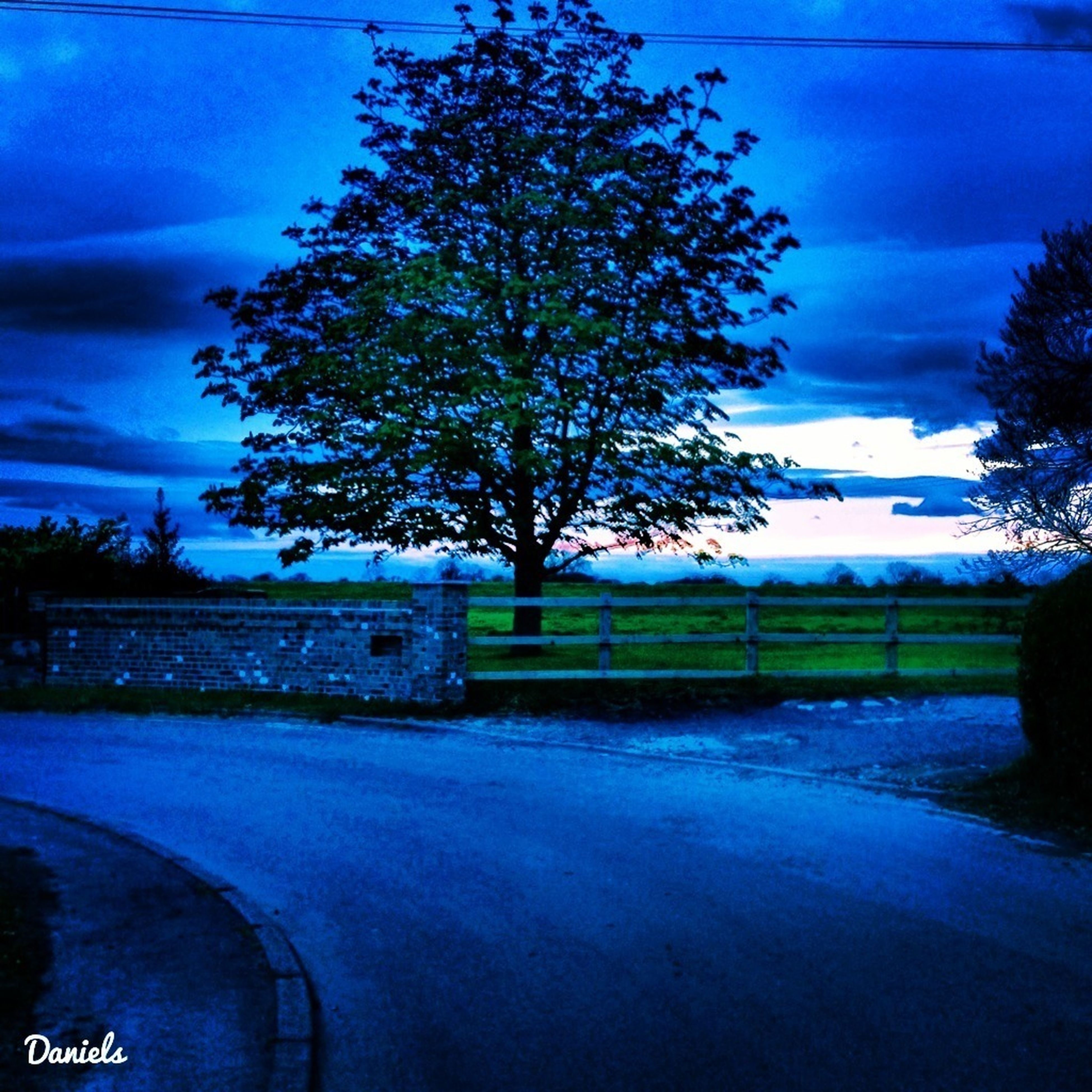 sky, tree, transportation, road, cloud - sky, bare tree, landscape, field, tranquility, cloud, country road, street, nature, tranquil scene, land vehicle, road marking, blue, car, no people, the way forward