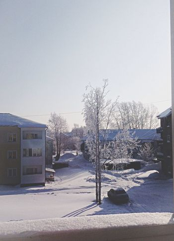 ❄️ Shine Bright Winter Morning Winter
