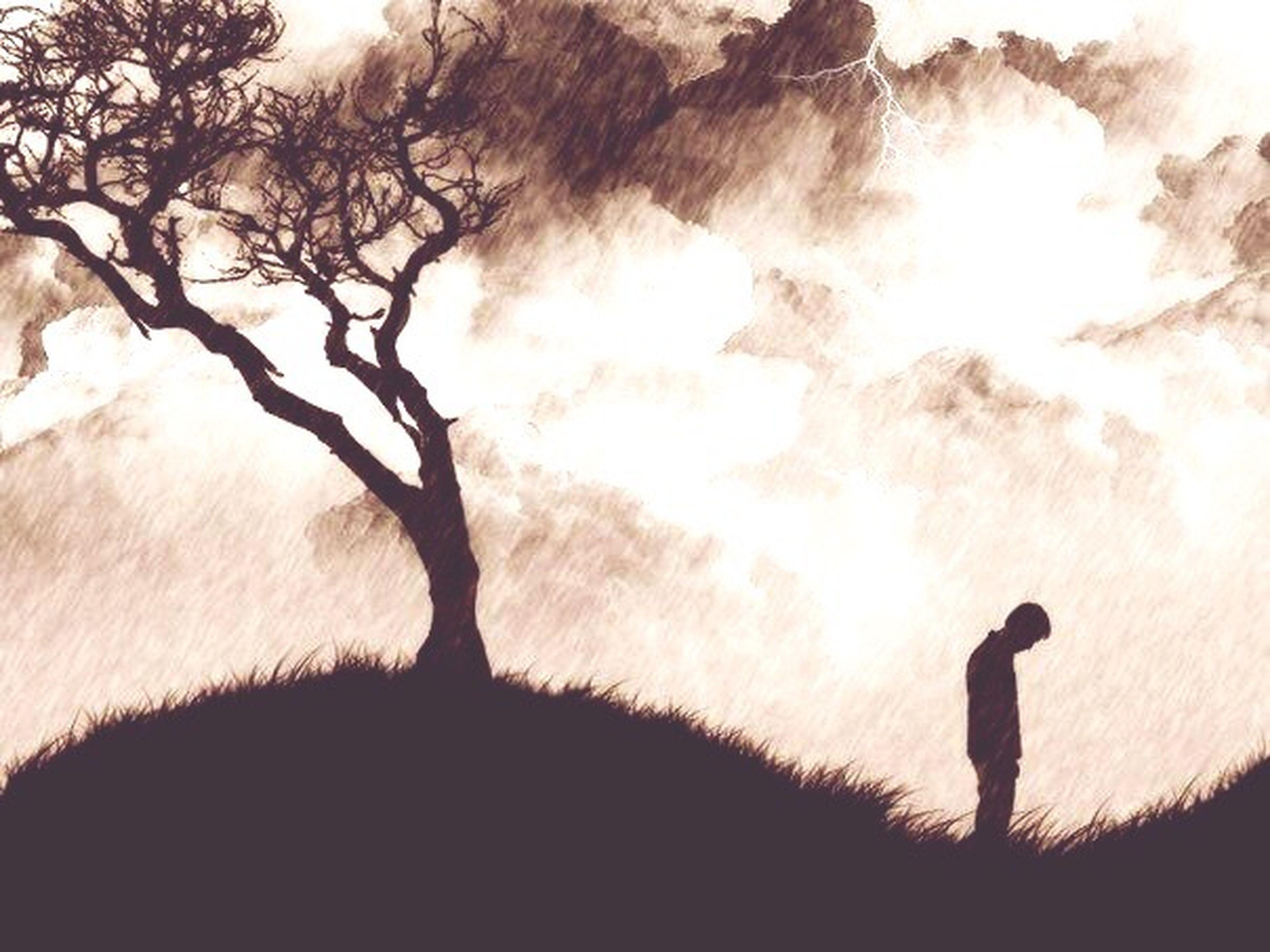 silhouette, sun, sunlight, tree, sunset, lifestyles, sunbeam, standing, full length, men, leisure activity, tranquility, nature, lens flare, bare tree, walking, landscape, tranquil scene