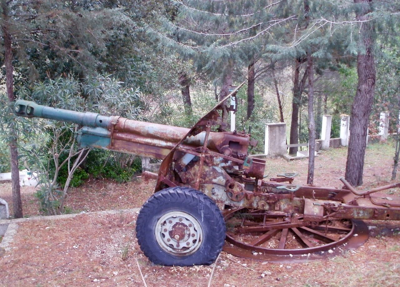 history, tree, weapon, day, field, cannon, no people, wheel, outdoors, war, old-fashioned, military, grass, nature, canon