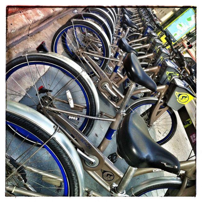 Rental Bikes.