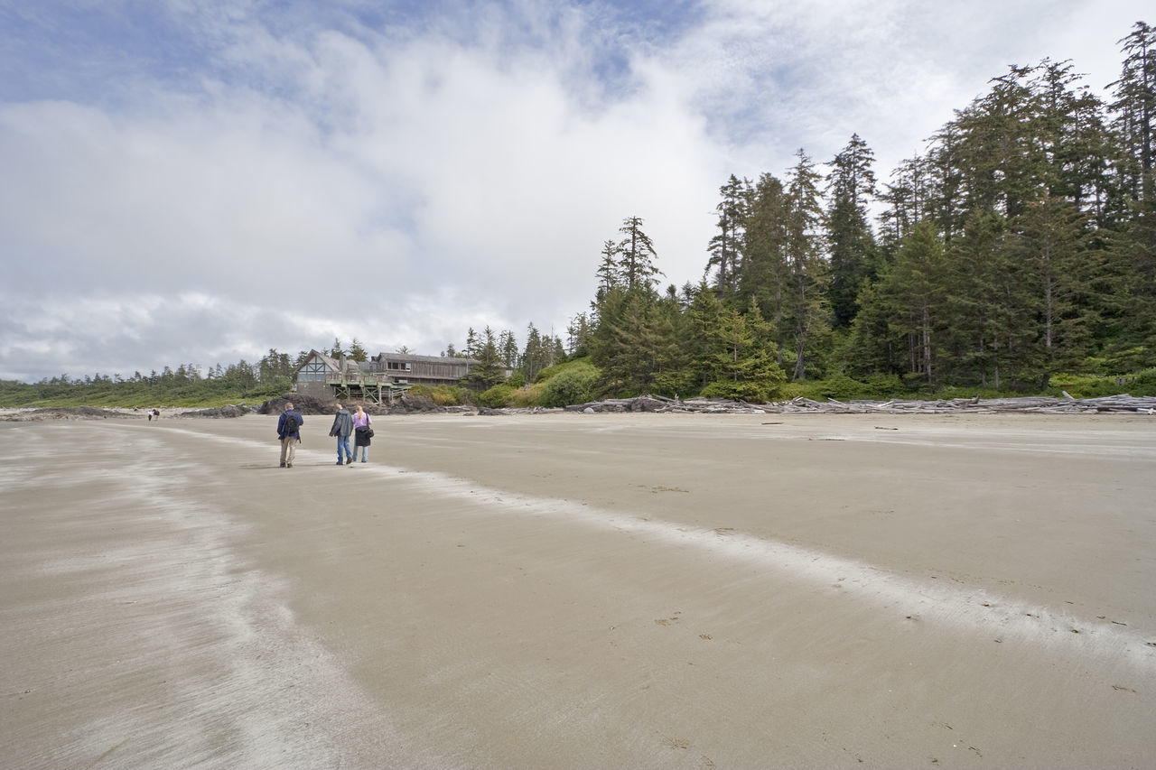 Wickaninnish Bay - Long Beach, Pacific Rim National Park, Vancouver Island, British Columbia, Canada Beach Beach Life Beach Photography Beachphotography British Columbia Building Exterior Canada Chalet Coniferous Tree Driftwood Family Forest Landscape Long Beach Pacific Rim National Park People Rainforest Restaurant Sand Temperate Rainforest Togetherness Vacations Vancouver Island Wickaninnish Bay Woods