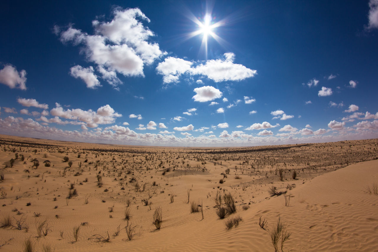 Adventure Arid Climate Beauty In Nature Blue Cloud Cloud - Sky Day Desert Desert Landscape Lens Flare Nature Nature Off The Beaten Path Offroad Outdoor Sahara Sand Scenics Sky Sun Sunbeam Sunlight Sunny Tranquility Tunisia