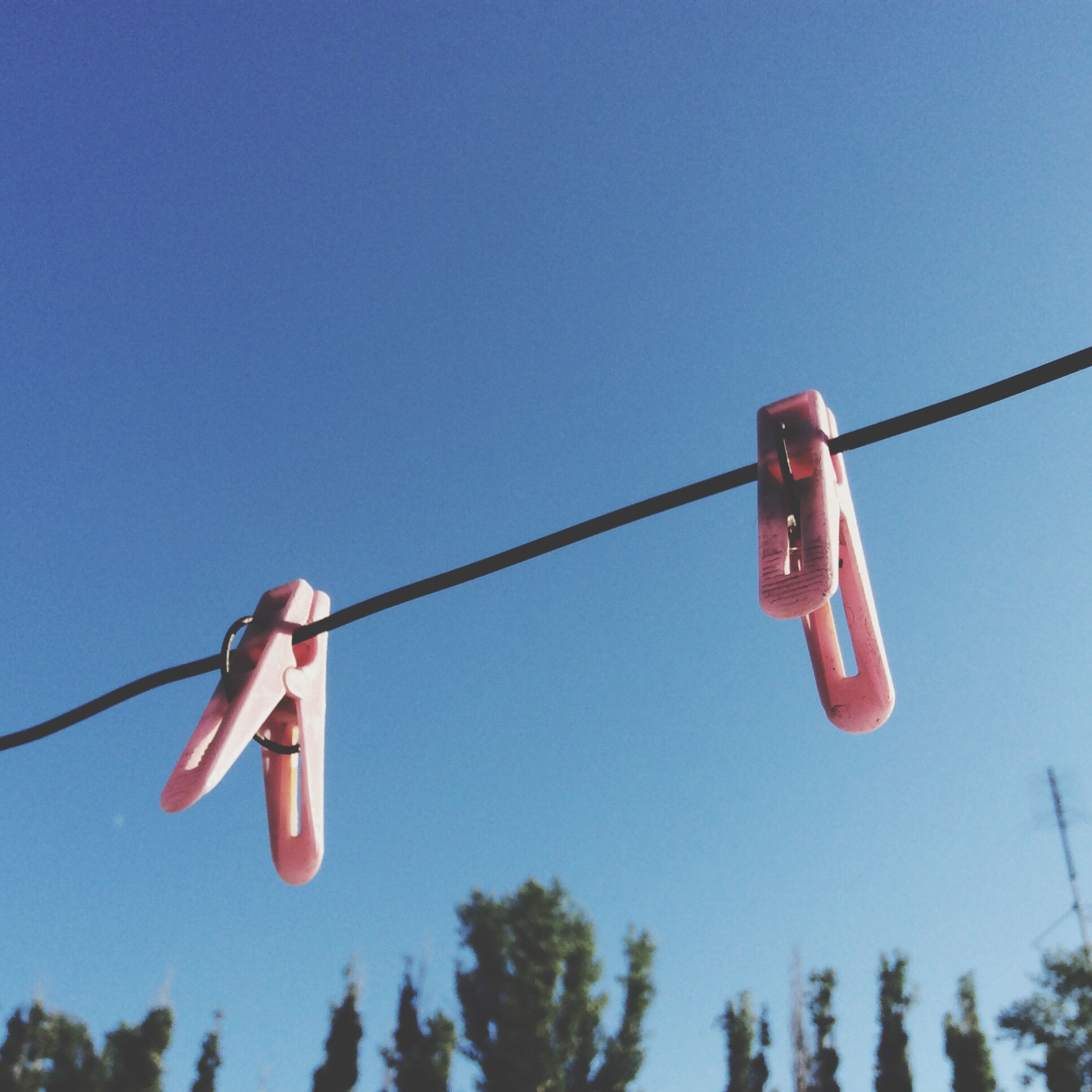 hanging, tree, low angle view, blue, clear sky, clothesline, rope, cable, clothespin, day, laundry, group of objects, high section, summer, scenics, red, tranquility, domestic life