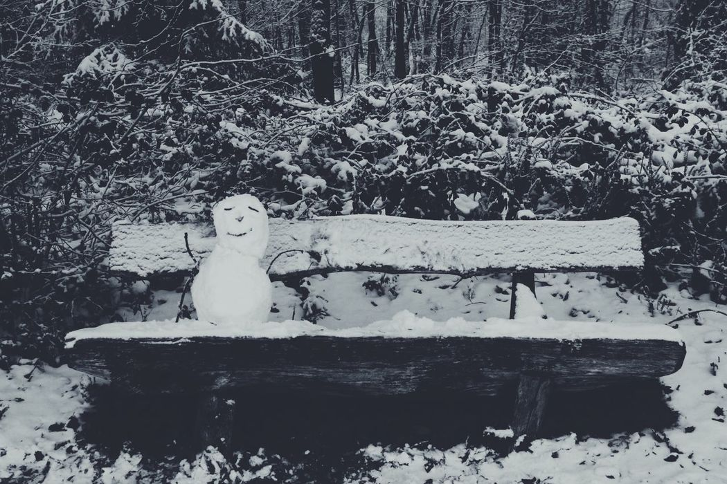 """""""Hello Mr. Snowman"""" Winter Snow Cold Temperature Nature White Color Weather No People Outdoors Day Snowman White Picture Winter Wintertime Silence Cold Photooftheday Coldday Awesome Capture Capture The Moment Germany Picoftheday 550d Canoneos550d"""