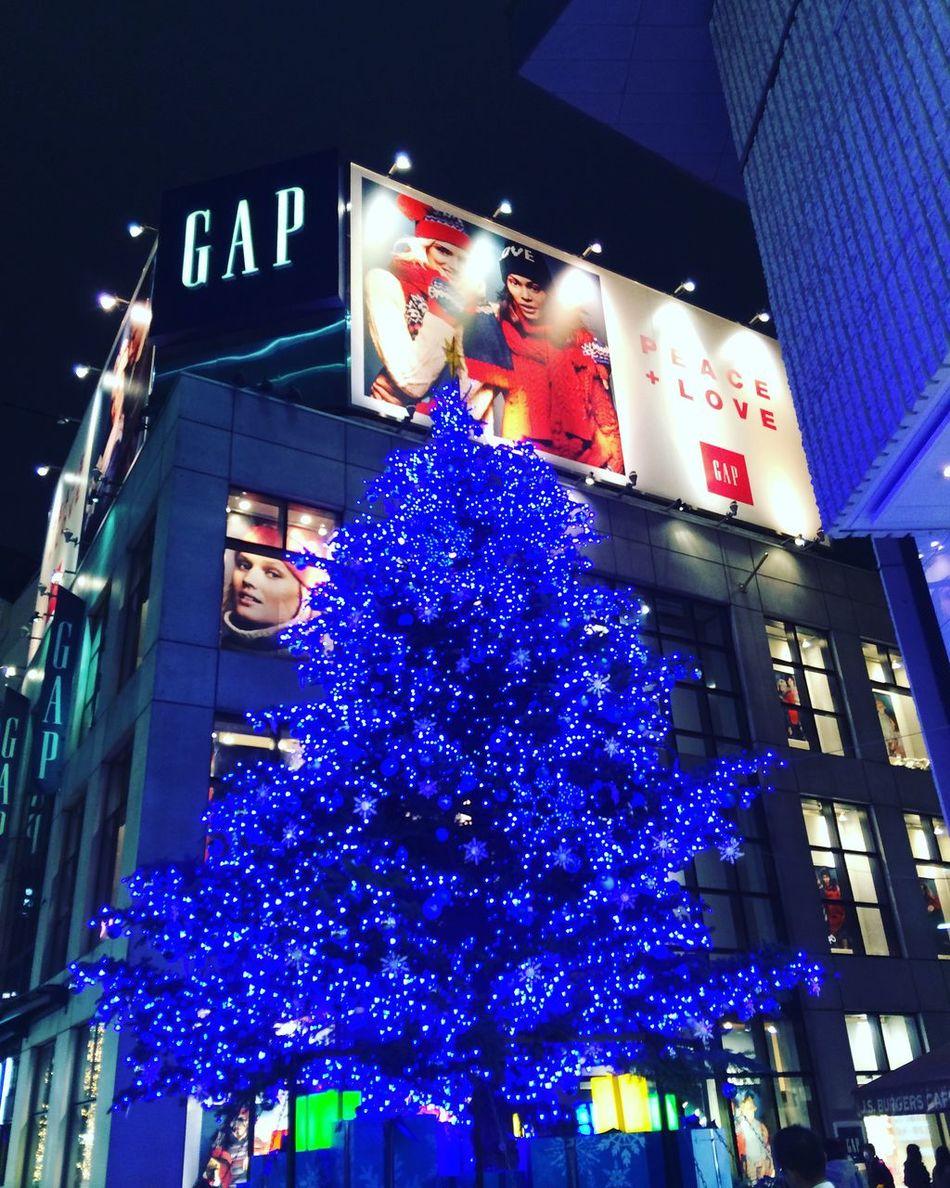 Marry Christmas Shibuya