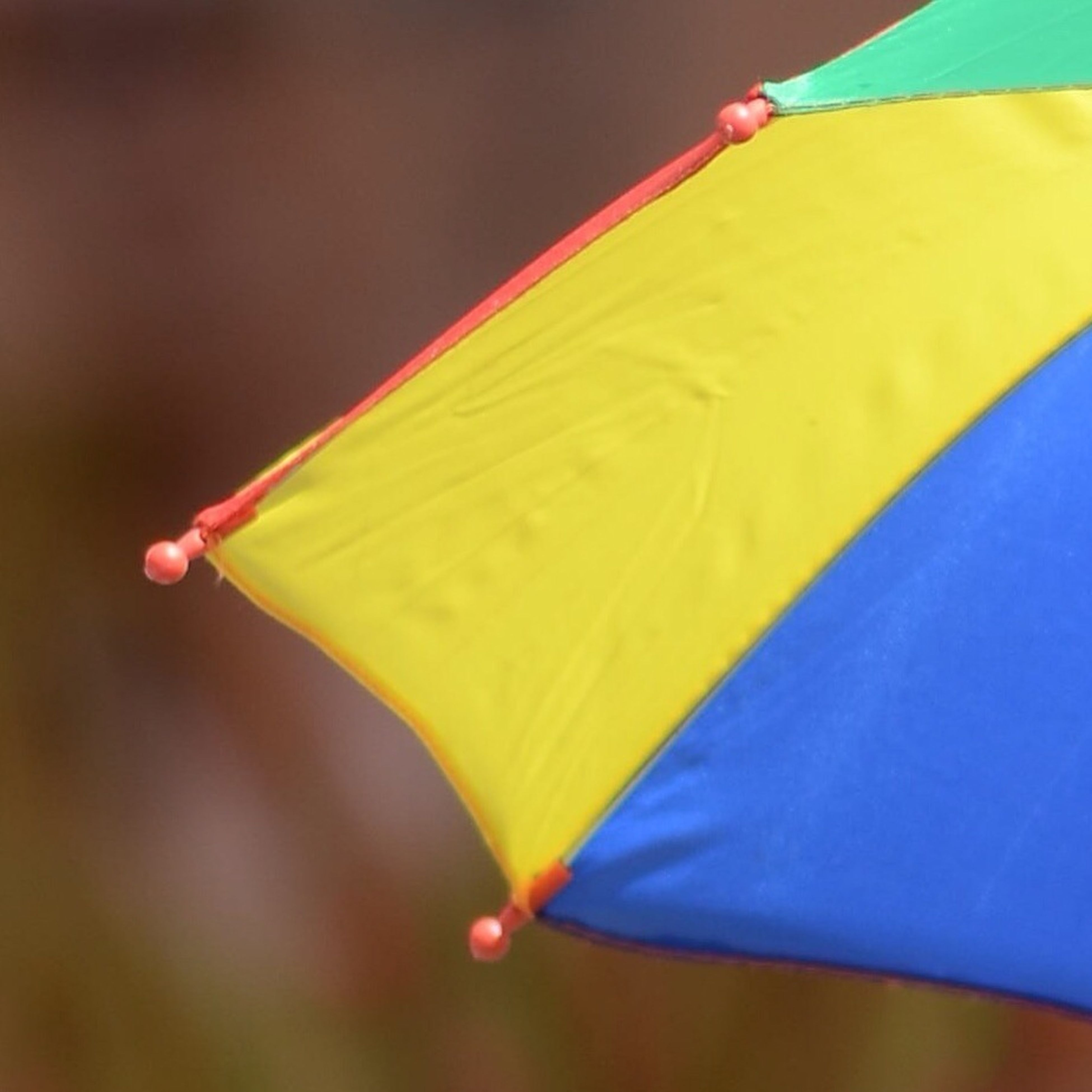 yellow, close-up, focus on foreground, multi colored, selective focus, blue, part of, day, outdoors, no people, colorful, fragility, single object, nature, umbrella, leaf, cropped, detail, vibrant color, green color