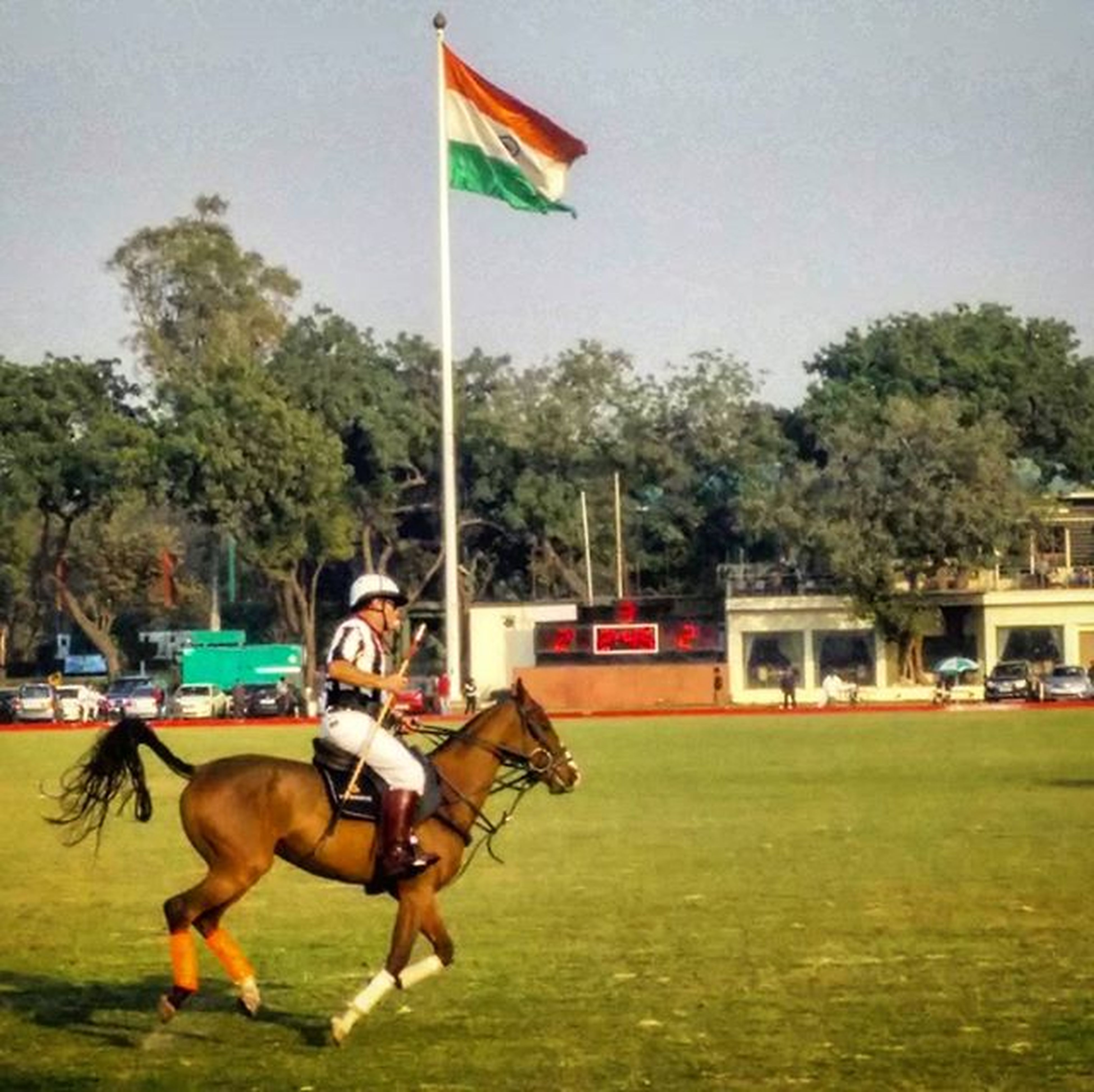 A great afternoon watching then polo match Celebrate Delhi Sunnyday Tiranga Sports Polo Horses Nofilter