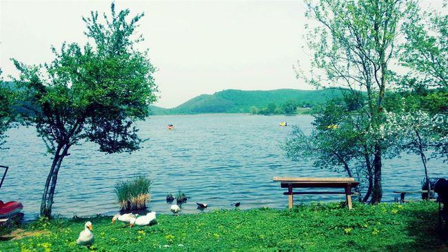Sakarya Poyrazlargölü Photo♡ Turkey First Eyeem Photo