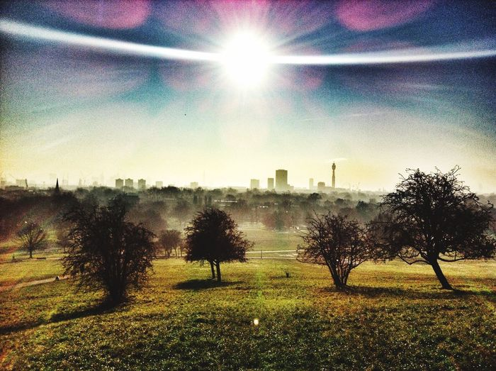 Primrose Hill Primrosehill Primrose Hill London Lanscape Battle Of The Cities
