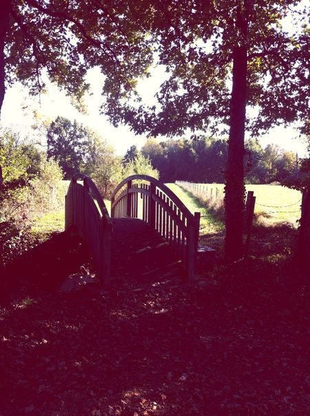 Balade en amoureux ? Autumn Authentic Moments Nature Holiday