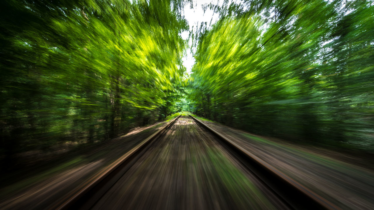 without feet / Beauty In Nature Diminishing Perspective EyeEm Best Shots Fast Forest Green Green Hugging A Tree Illuminated Landscape Motion Nature Outdoors Rails Railway Shootermag My Year My View Speed The Way Forward Trees Vanishing Point Woods capturing motion