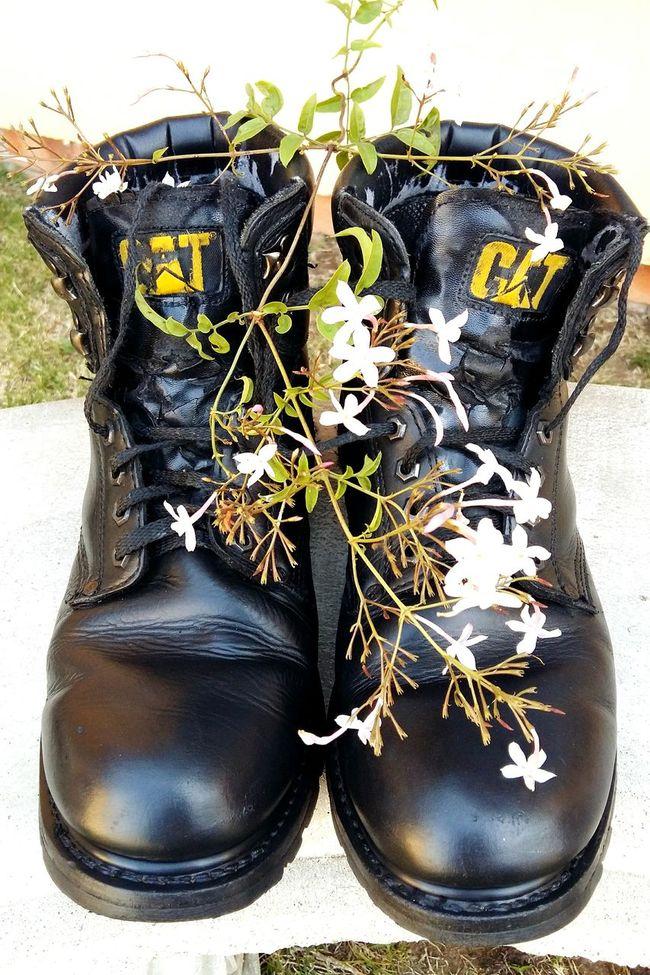 Black Cat Boots Jasmine Flower Well Worn Boots