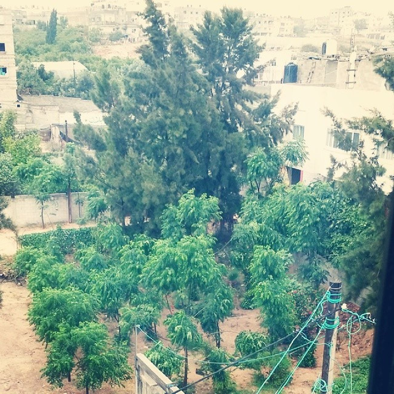 مطر بيت ﻻهيا صباح_الخير