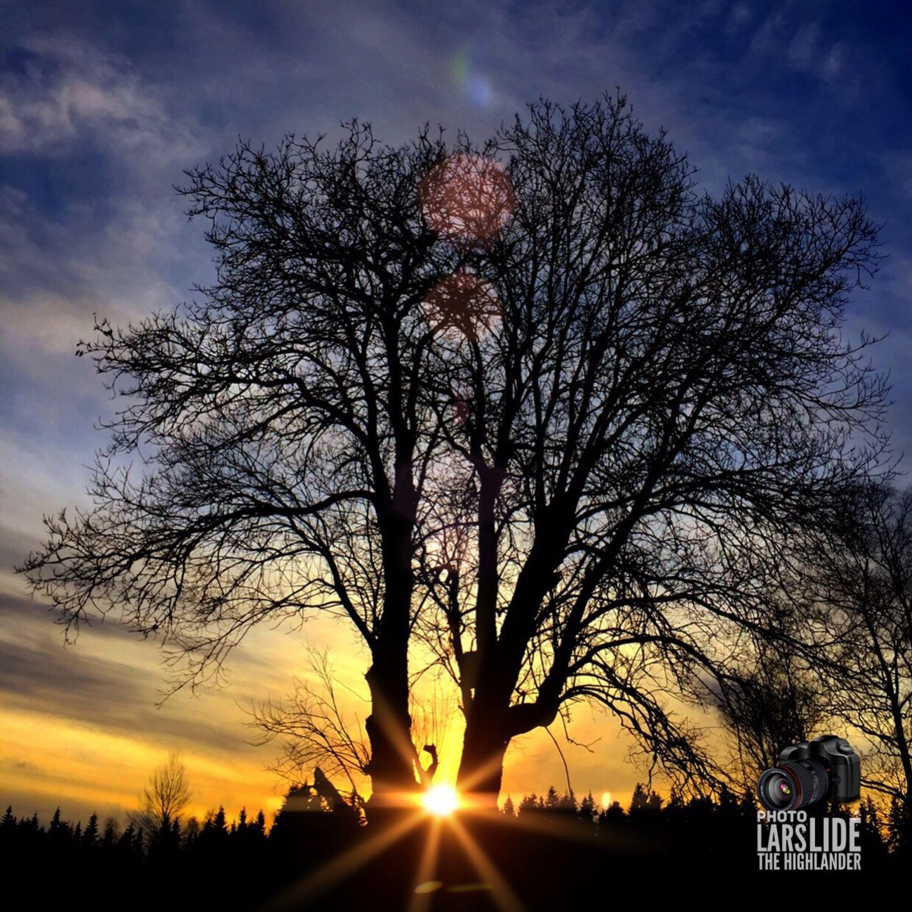 Sunset Sky Tree Cloud - Sky Outdoors No People Nature Landscape Countryside Cold Temperature Winter Beauty In Nature