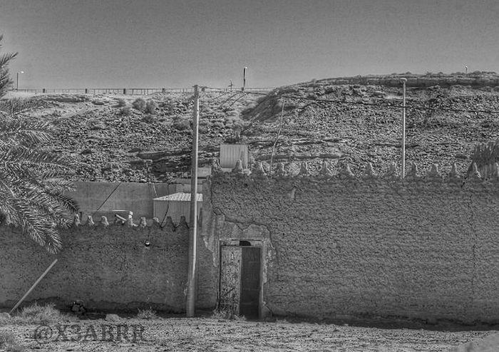قديم تمثال تصميم منظر الربيعية ابيض_اسود تراث التراث نخل Palm Heritage 😚 Old HDR Blackandwhite Nature Landscape القصيم Saudiarabiatag