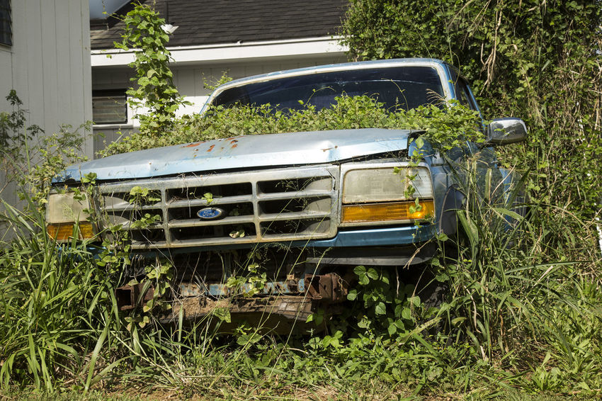 overgrown broken car in backyard Automobile Ford Truck Forgotten Glitch Malfunction Overgrown Abandoned Abandoned Car Bachyard Break Down Broken Car Day Grass Land Vehicle Lush Green No People Outdoors Overgrown And Beautiful Rusty Transportation