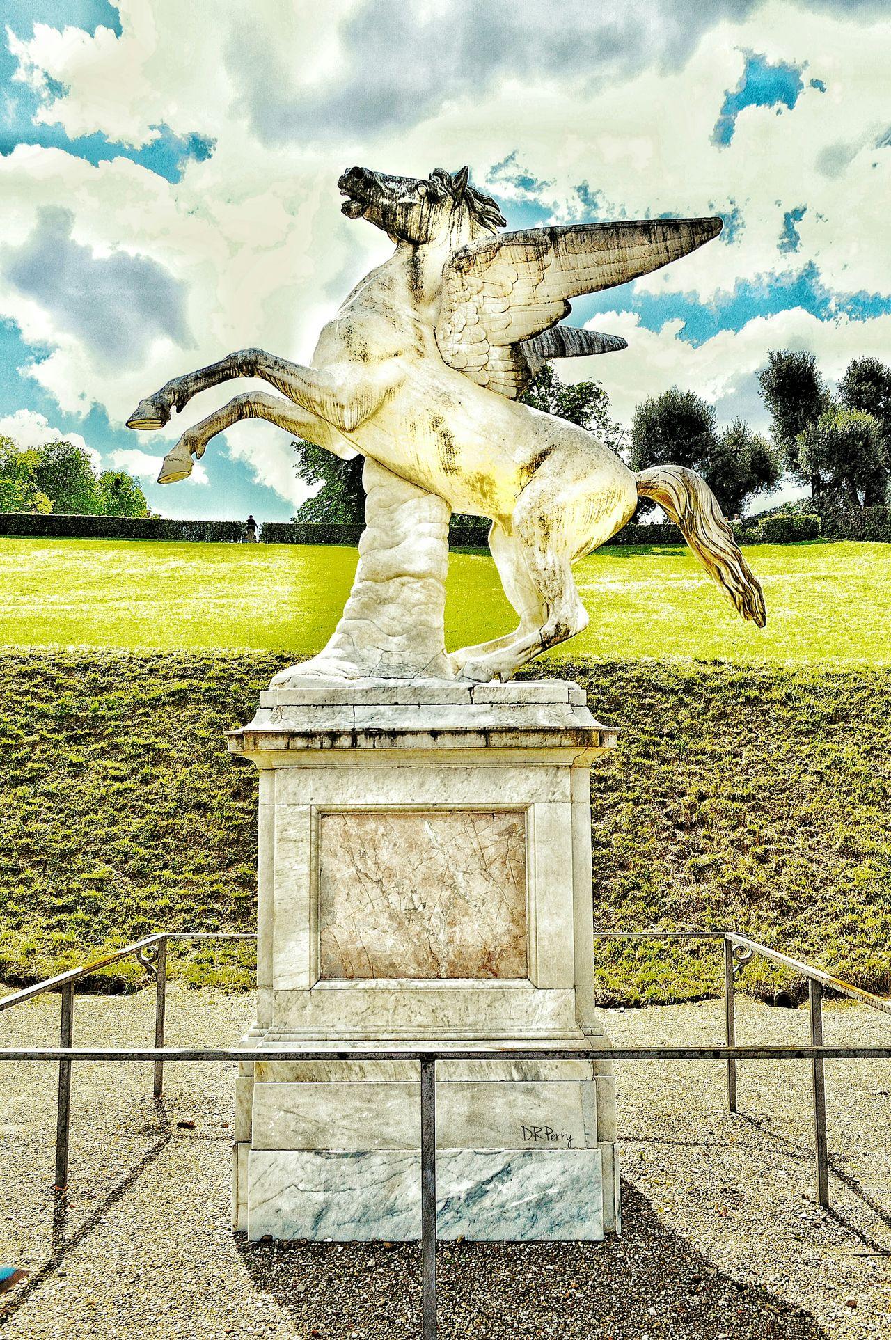 """Pegasus"" - Aristodemo Costoli(1803–1871)Boboli Gardens - Firenze Florence Italy Italia Photobydperry Pegasus Statue Aristodemocostoli Sculpture Boboligardens Boboli Garden Firenze"