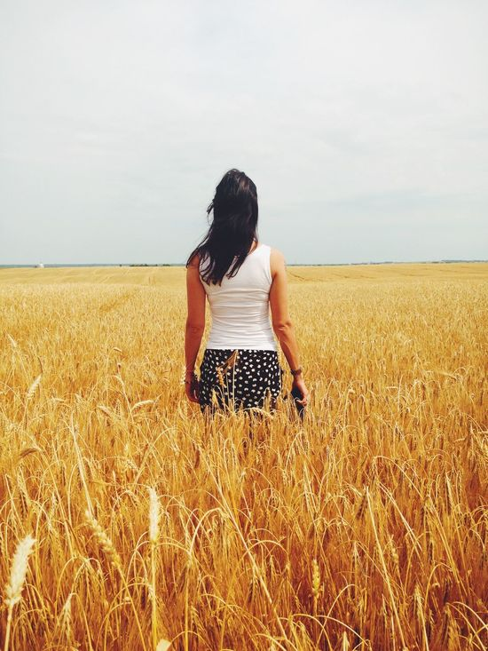 On the wheat field