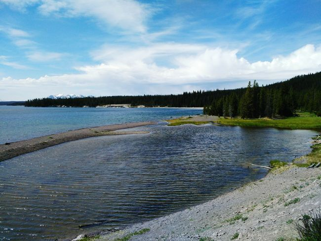 Summertime Memories Sumer Memory Essence Of Summer Nature_collection Fun Water Reflections Nature Photography Water_collection Water Sky Clouds And Sky Cloud Forest Lake Lakeshore Lakeside Sandbar Yellowstone National Park Yellowstonenationalpark Yellowstone Lake Whiterock