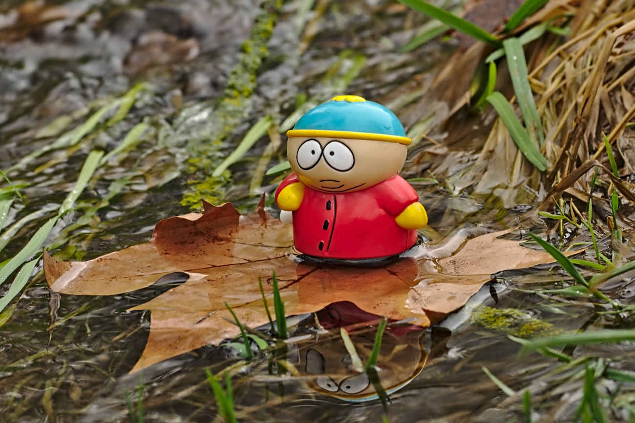 new adventure Adventures Arrangement Best Friends Cartman Close-up Day Figurine  Floting Focus On Foreground Grass Leaf Nature New Adventures Outdoor Photography Outdoors Plastic Red Selective Focus Southpark Talking Photos Telling Stories Differently Toy Toy Adventures Toy Story Water Reflections