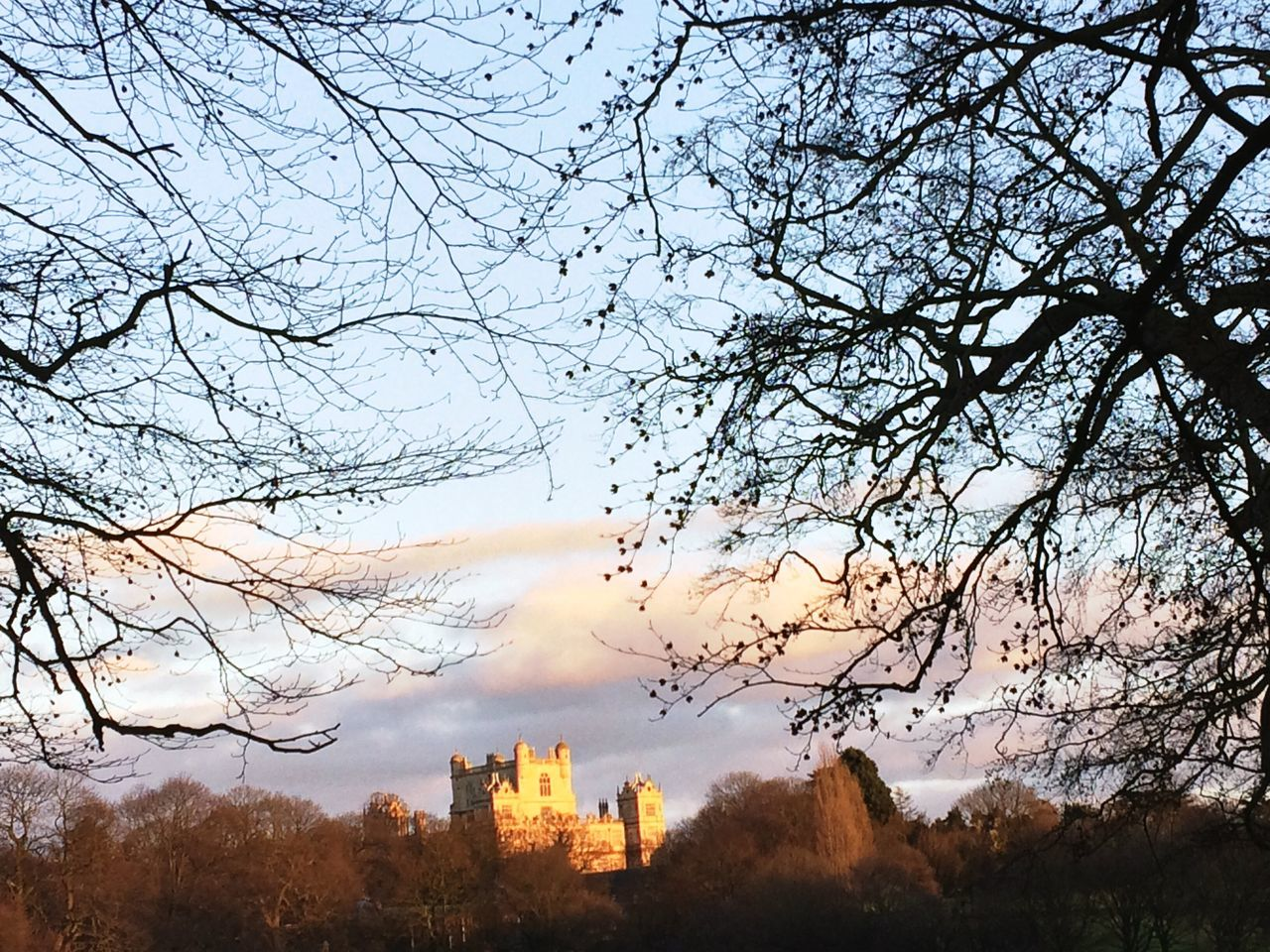 Tree Building Exterior Architecture Sky Built Structure Nature Wollaton Hall Outdoors Bare Tree Beauty In Nature Sunset Branch Day Water Wollatonpark Clouds