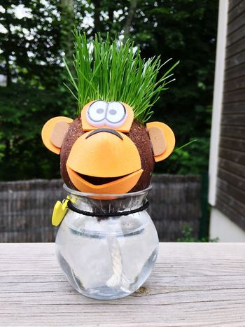 Wood - Material Nature Grass Monkey Fun