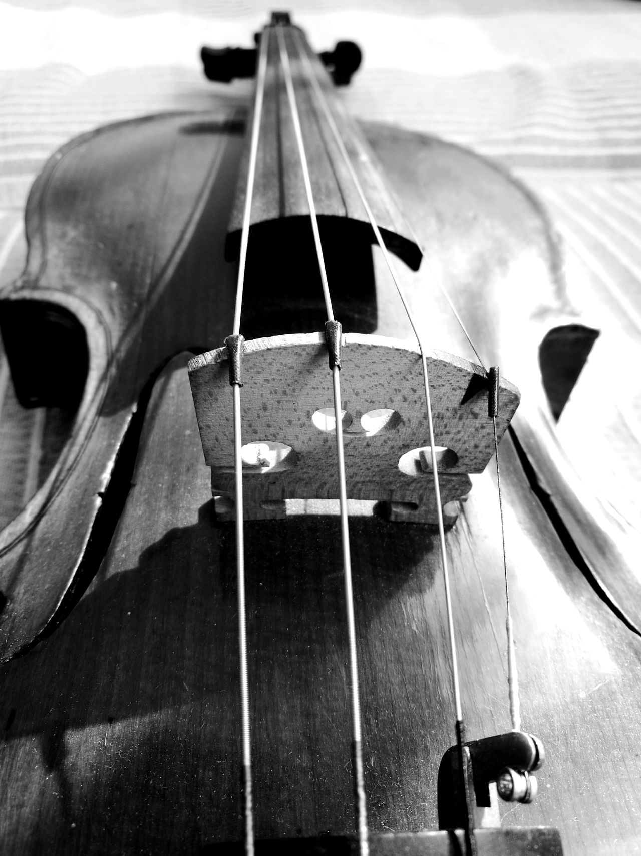 My old soul Musical Instrument Musical Instrument String Arts Culture And Entertainment Music Musical Equipment String Instrument Violin Wooden Texture Violin <3 Violin Strings Violin Soul EyeEmNewHere