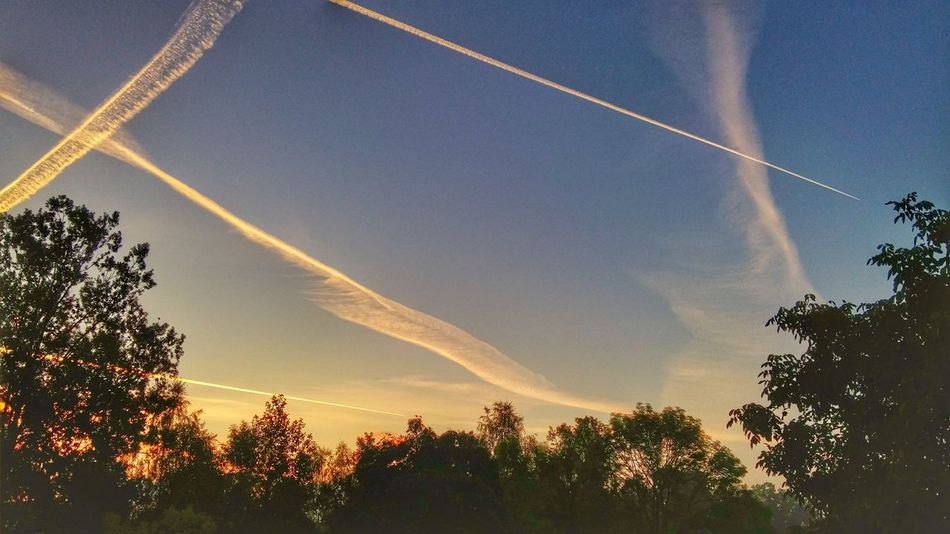 Today's Sunrise Sky Smudges Planes Trees Morning East