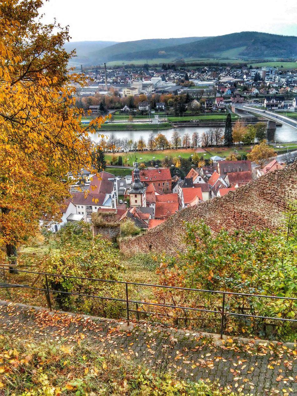 Wineyard Herbst In Seinen Schönsten Farben Klingenberg Landscape