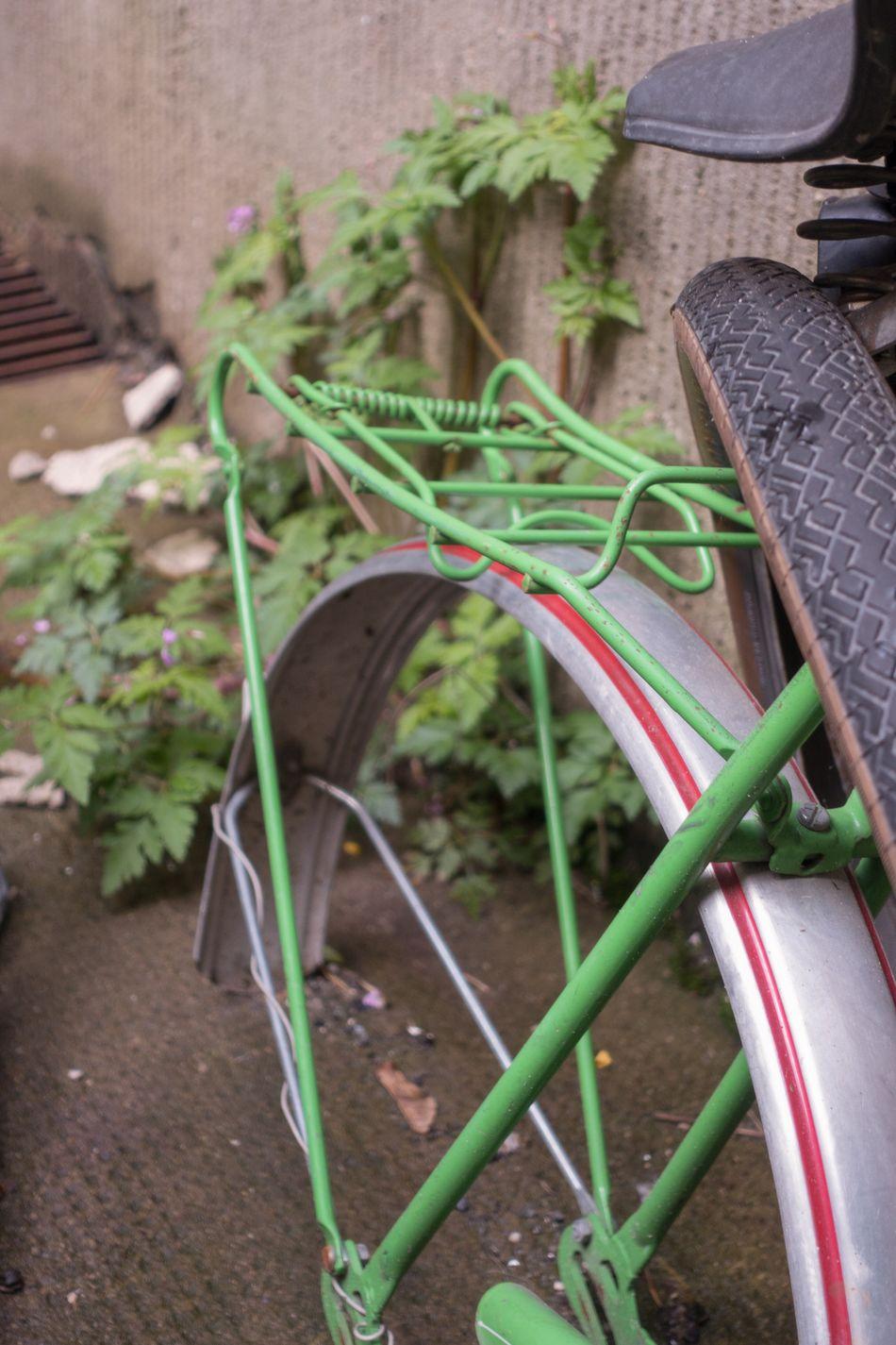 Berlin Hinterhof Fahrrad Still Life Stilleben