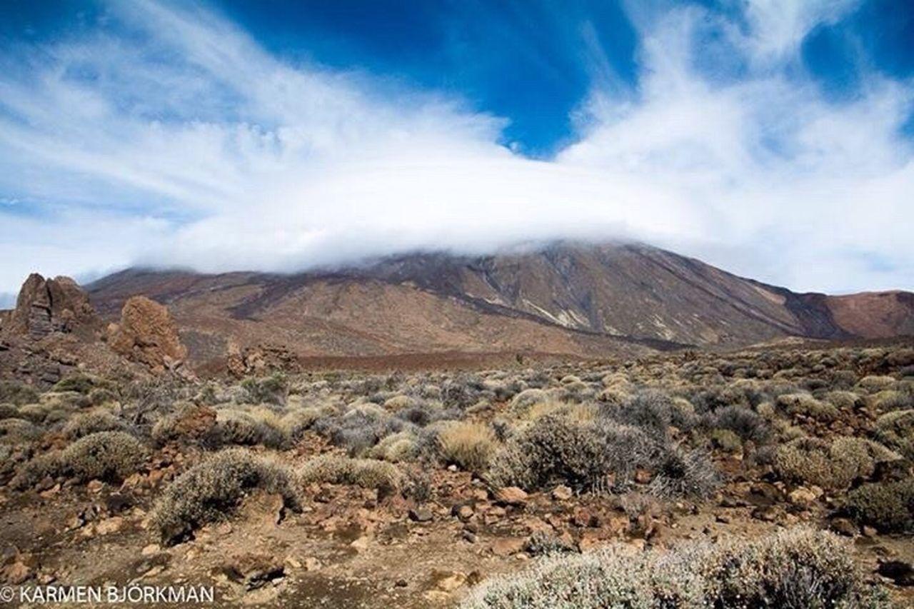 Teide National Park Teide Nature Tenerife Tenerife Island Teneriffa Tenerife España Vulcano