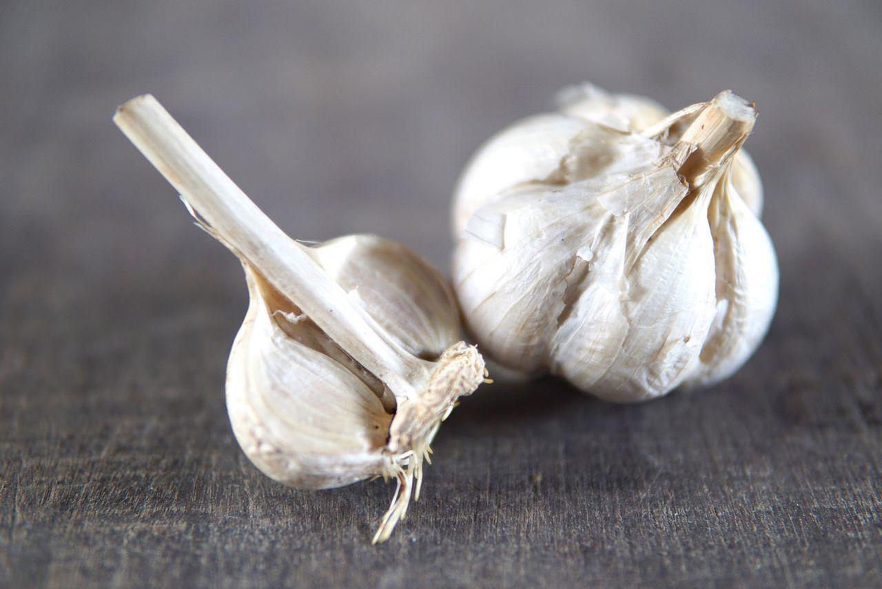 Close-up Garlic Garlic Clove Ingredients