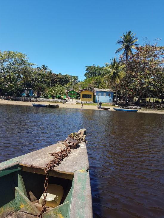 Water Nautical Vessel No People Beach Outdoors Day Tree Moored Clear Sky Sea Nature Sky Palm Tree ship Caraíva -Brazil Caraiva