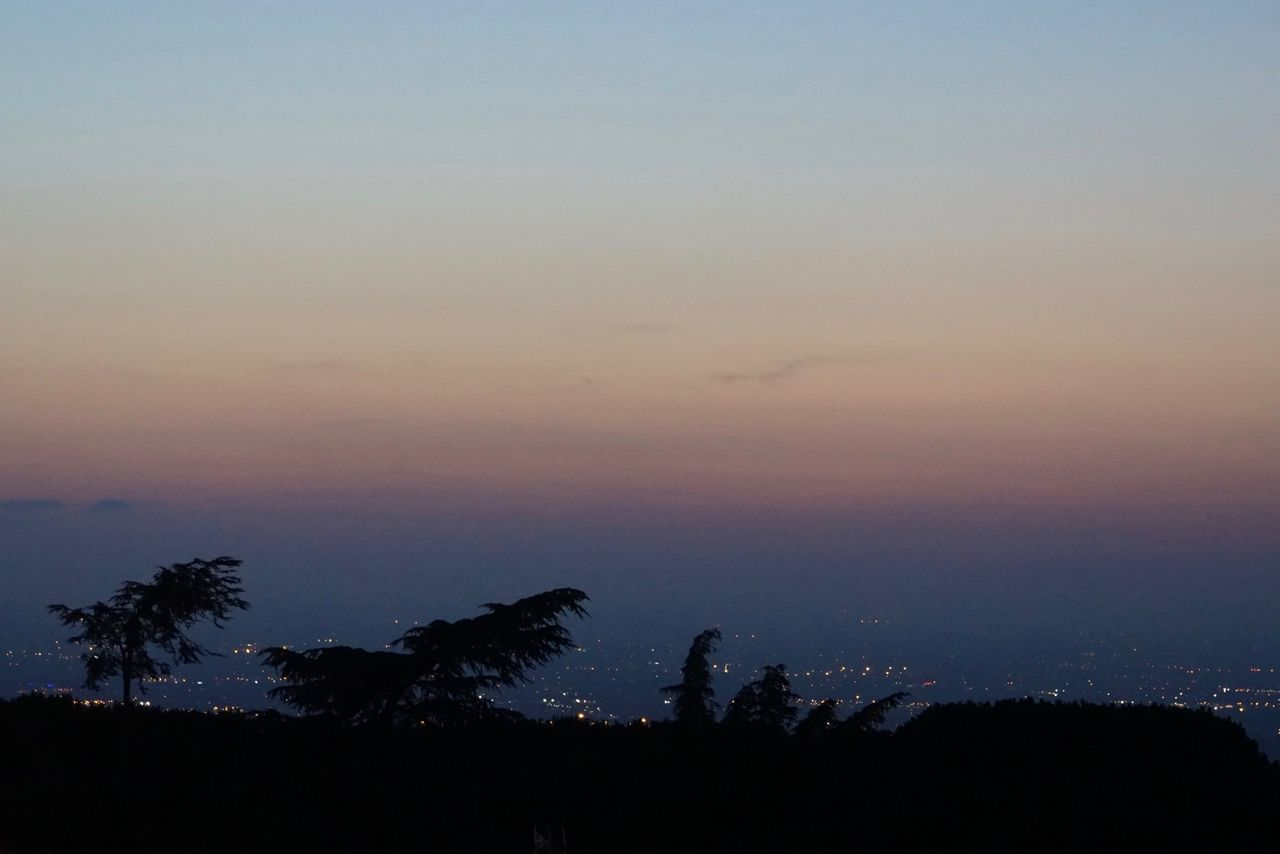 golden hour view over Rome from Tivoli Atmosphere Beauty In Nature Blue Calm Dark Dusk Golden Hour Idyllic Nature Outdoors Outline Palm Tree Panorama Remote Rome Scenics Silhouette Sky Solitude Sun Sunset Tivoli Tranquil Scene Tranquility Tree