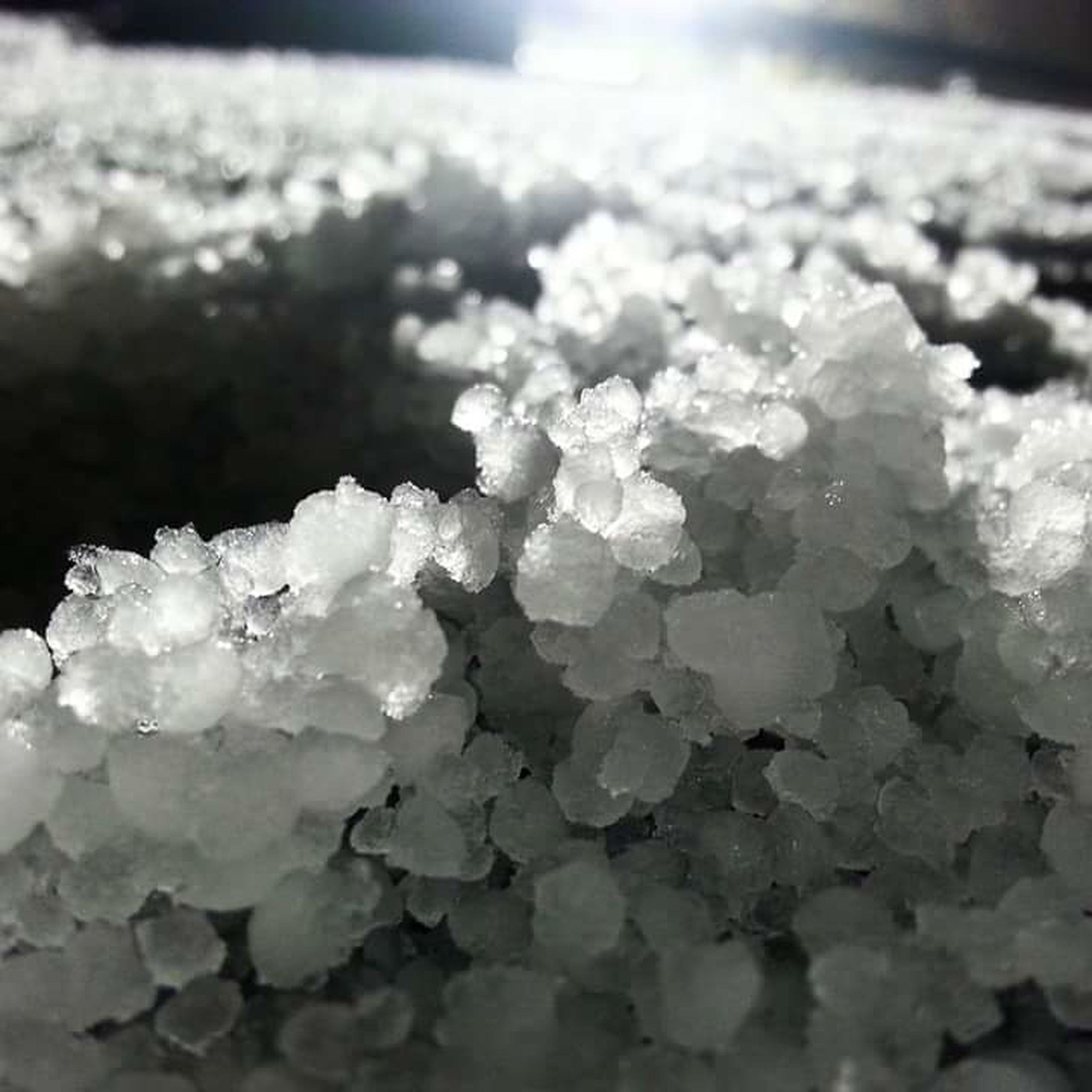 pile of hail on top on the car. Pileofhail Hail  Winter Cold Temperature Beauty In Nature No People Outdoors Nature PNW